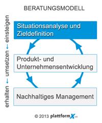 Analyse und Zieldefinition - PlattformX e.U.